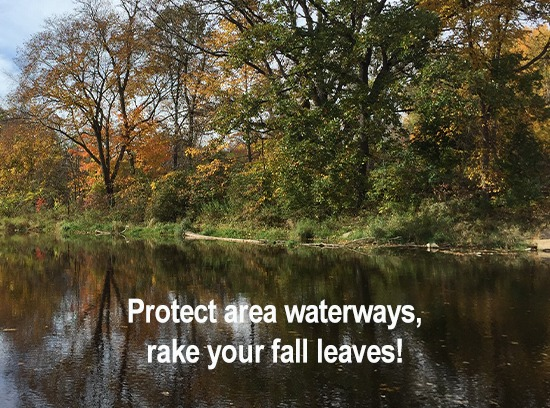 Love Your Watershed and rake your fall leaves